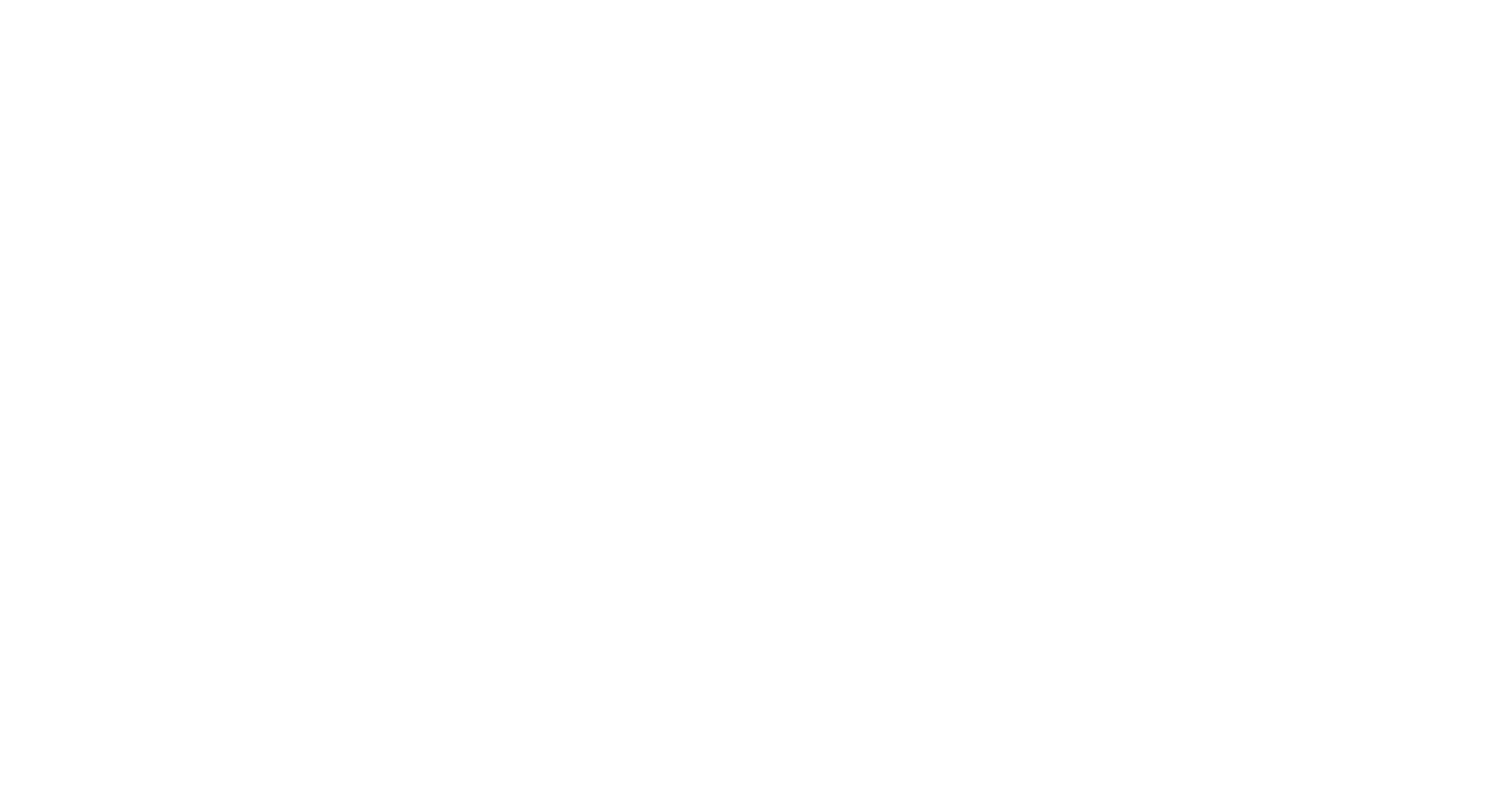 Dell White Logo